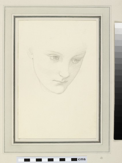 Sketch of a woman's face, eyes gazing down