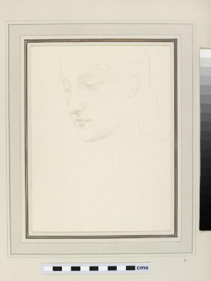 Study of a head in near profile