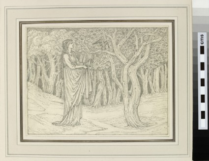 Study of a woman in a forest clearing (probably for 'The Squieres Tale', Kelmscott Chaucer)