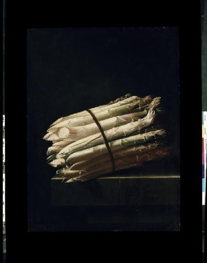 Still Life of Asparagus