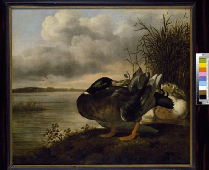 A Pair of Ducks in a Landscape