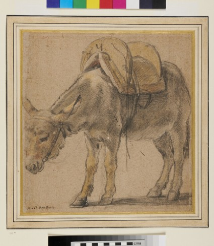 A Donkey turned to the left, wearing a Pack-saddle
