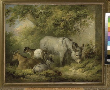 Farmyard Scene: a Donkey and Goats