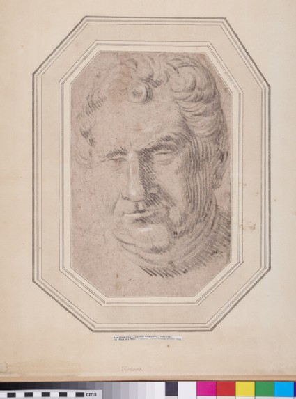 Head of Emperor Vitellius