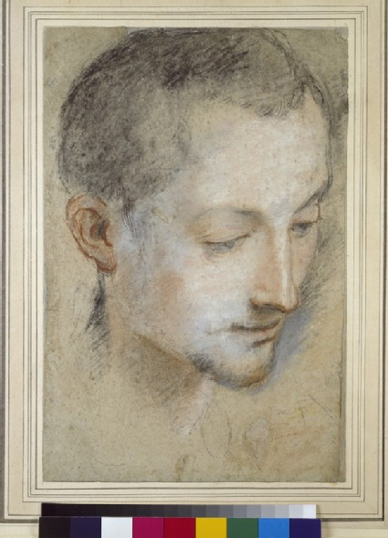 Study of a Young Man's Head