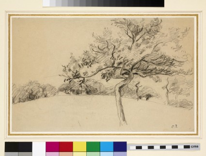 Study of the orchard at Eragny-sur-Epte with a tree in the foreground
