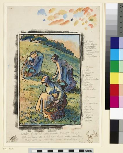 Women weeding the grass
