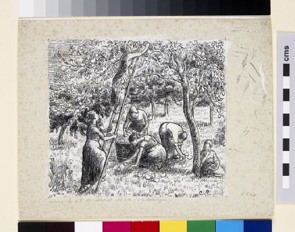 Compositional study of female peasants harvesting apples