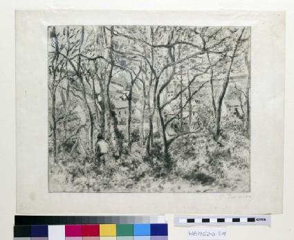 Paysage sous Bois, à l'Hermitage (Pontoise)