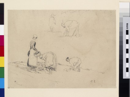 Studies of Peasants working in a Field