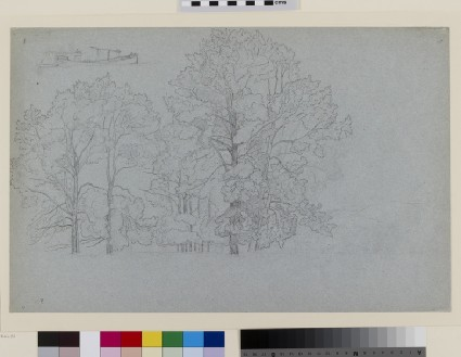 Study of Trees, with a slight Study of a Barge