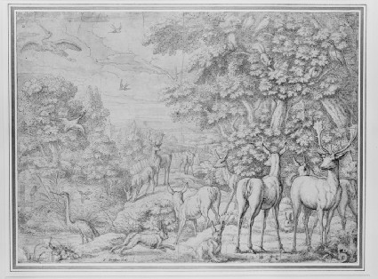 Animals and birds in a landscape