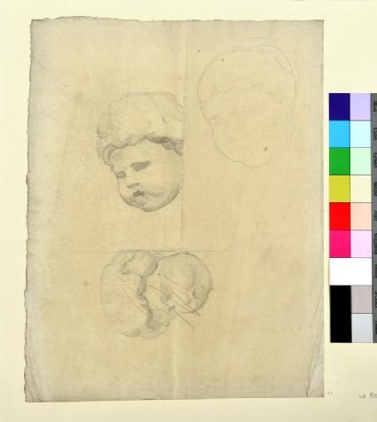 Studies of a Cherub's Head