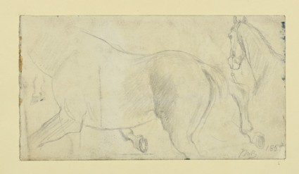 Recto: studies of a horse for 'The Traveller'