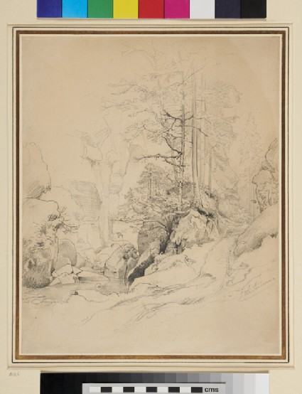 A stream in a rocky wooded valley