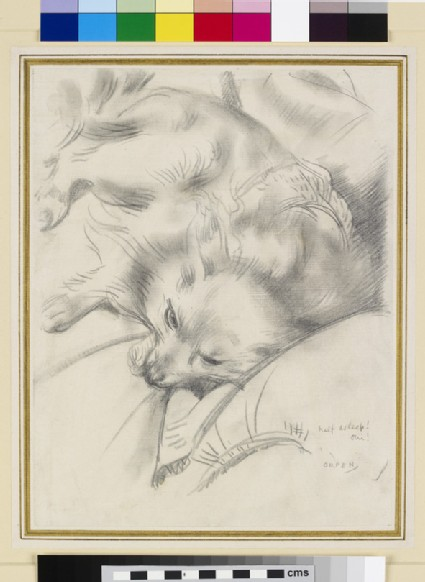 Study of the Artist's Dog