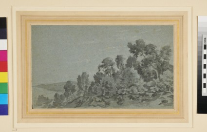 A wooded Hillside