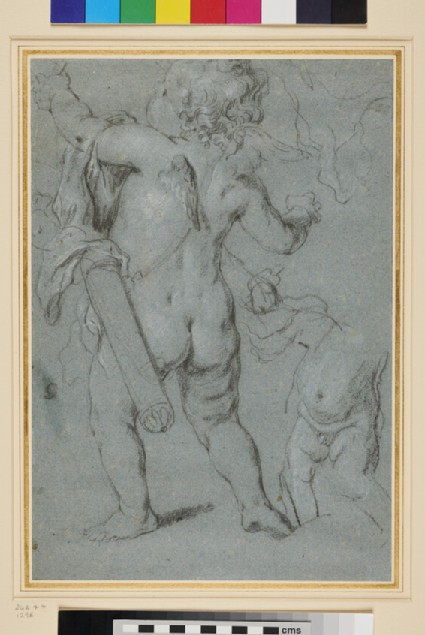 Studies of a Cupid