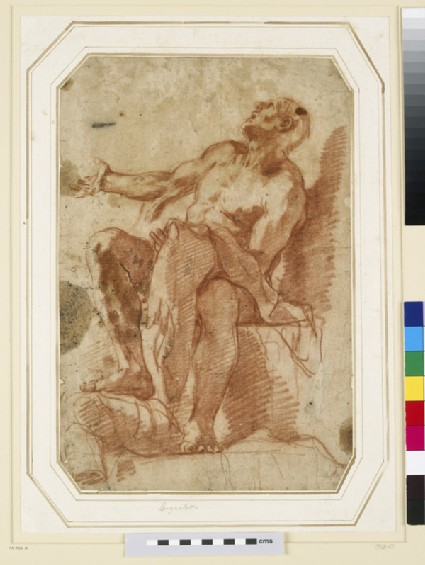Study of a seated nude Figure