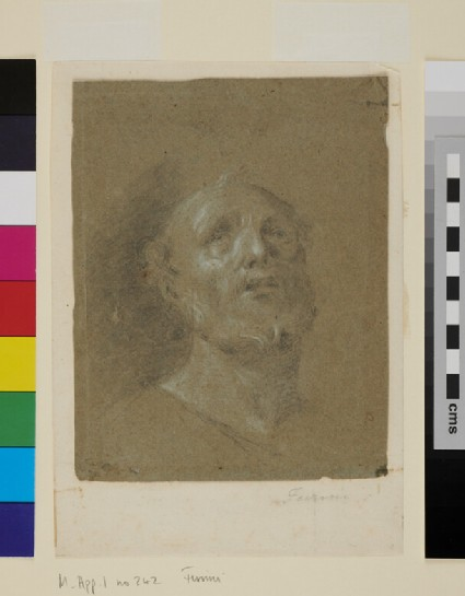 Recto: Head of a bearded Man