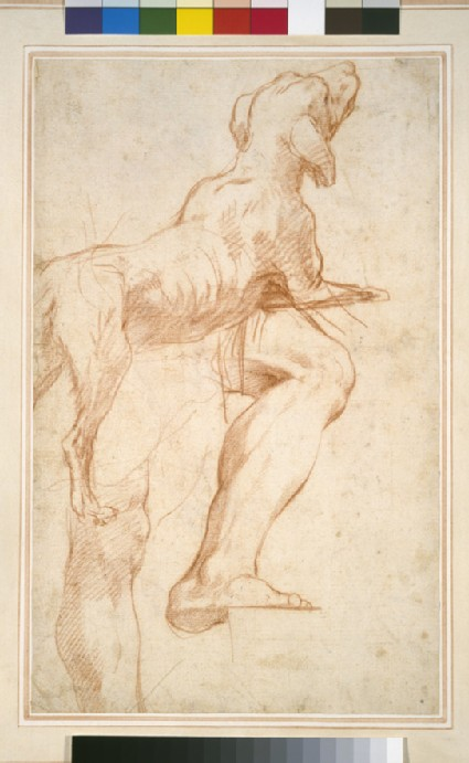 Study of a Man's Legs and of a Dog