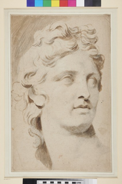 Study of the Head of the Apollo Belvedere