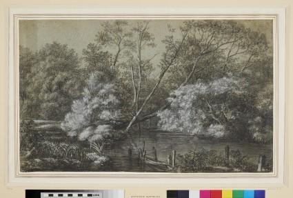 A River through a Wood