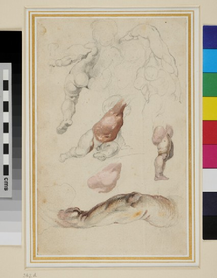 Recto: Studies of Putti, a Torso and an Arm 