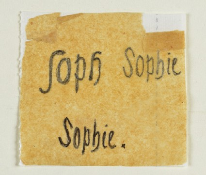 Lettering Designs for Sophie Dalrymple