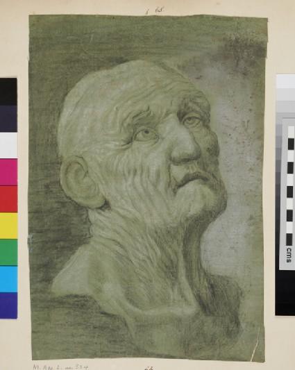 Head of Seneca (after Reni)