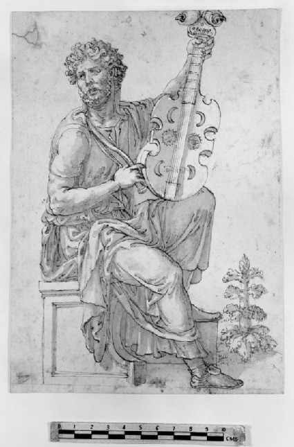 Study of a man with a stringed instrument (lira da braccio)
