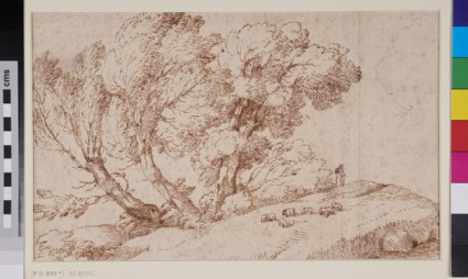 Landscape with three trees and a shepherd