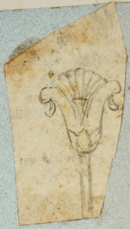 Design Motif, based on the Lotus Plant