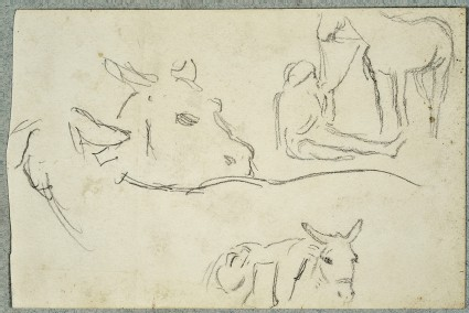 Studies of a Bullock's Head, a Donkey, and an Arab holding a Horse's Reins