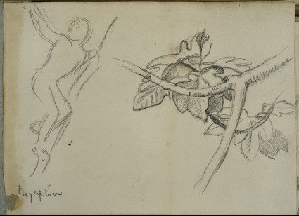 Recto: Studies of a Boy up a Tree and a Fig Leaf and Branch