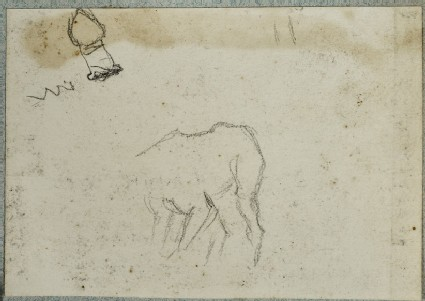 Study of a Dog's Hindquarters for 'The Triumph of the Innocents'