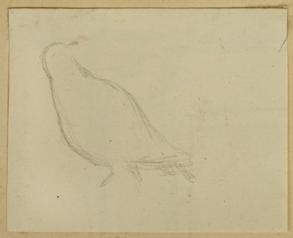 Recto: Study of a Bird