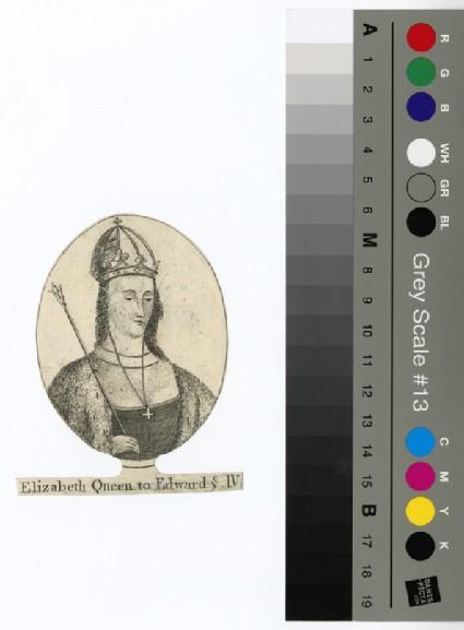 Portrait of Elizabeth, Queen to Edward IV
