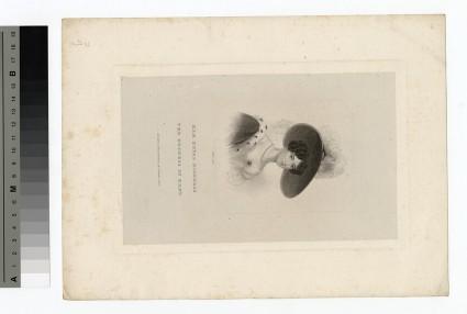 Portrait of Duchess Kent