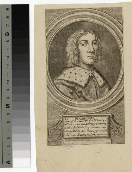 Portrait of Malduinus