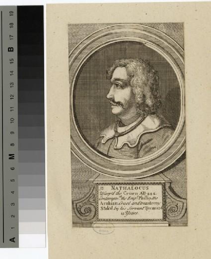 Portrait of Nathalocus