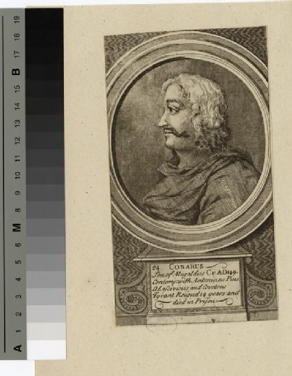 Portrait of Conarus