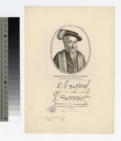 Portrait of Edward Seymour, 1st Duke of Somerset