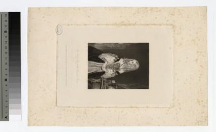 Portrait of Lady Elizabeth Leveson Gower