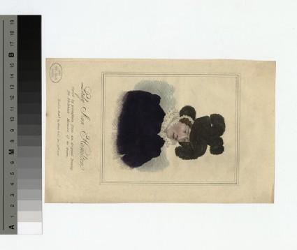 Portrait of Lady Ann Hamilton