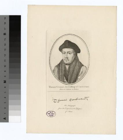 Portrait of Archbishop Cranmer
