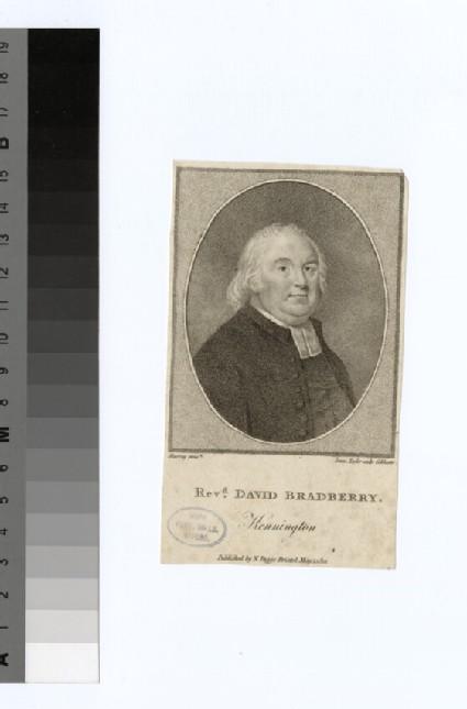 Portrait of D. Bradberry