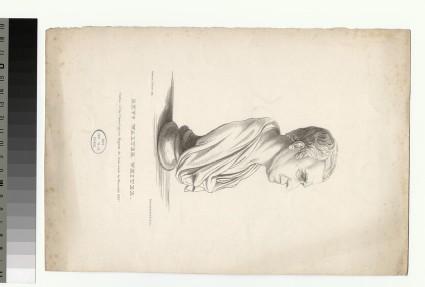 Portrait of Walter White