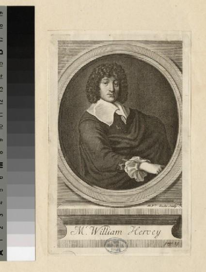 Portrait of W. Hervey