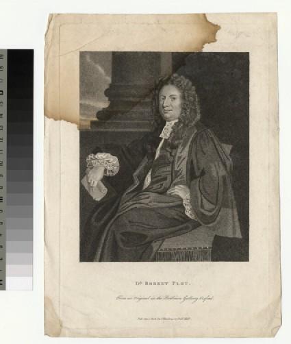 Portrait of R. Plot